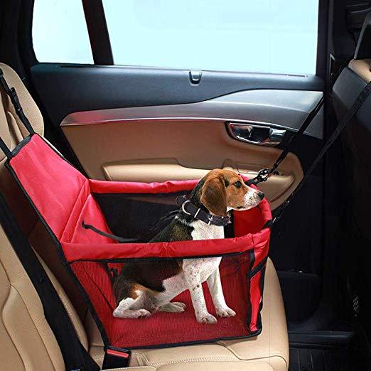 Siege auto pour petit chien